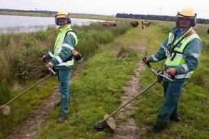 De groenmedewerkers van WML Facilitair kom je ook in het buitengebied tegen.