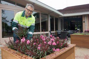 WML Facilitair voor ontwerp, aanleg en onderhoud van tuinen en groenvoorzieningen.